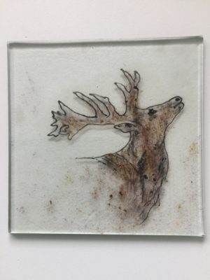 Hand drawn calling Stag fused onto clear glass