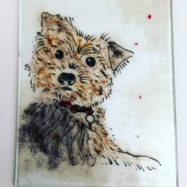 Fused glass dog portrait
